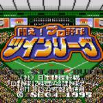 闘え!プロ野球ツインリーグ
